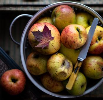 Apples for apple wine recipe