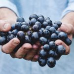 Blueberries for blueberry wine recipe