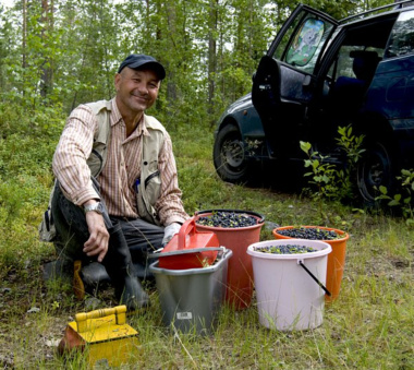 man and buckets full of blueberries