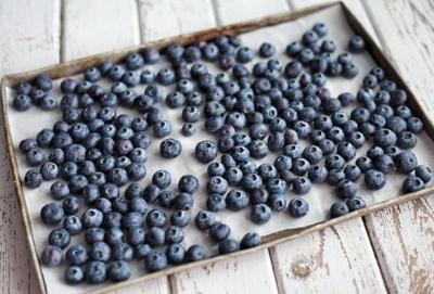 preparing blueberries