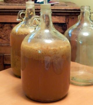 fermentation process bubbling fizzing