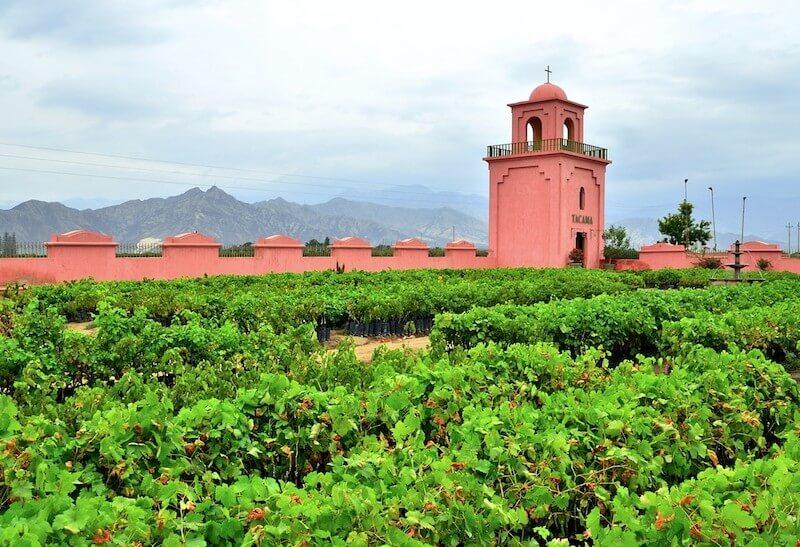 Bodega-Tacama-Ica-Peru-Vineyards-Mountains