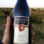 Ifrikia Rouge Reserve Wine - Tunisia